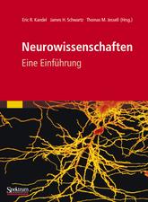 Neurowissenschaften: Eine Einführung