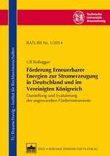 Förderung Erneuerbarer Energien zur Stromerzeugung in Deutschland und im Vereinigten Königreich