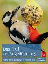 1 x 1 der Vogelfütterung