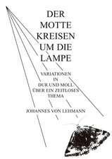 Der Motte Kreisen Um Die Lampe:  Innovation Im Rahmen Des Europ Ischen Sozialfonds
