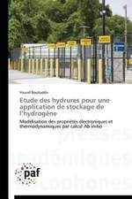 Etude des hydrures pour une application de stockage de l'hydrogène