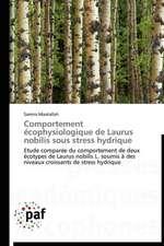 Comportement écophysiologique de Laurus nobilis sous stress hydrique