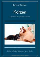 Katzen - geboren, um gesund zu leben