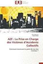 Azf:  La Prise En Charge Des Victimes D'Accidents Collectifs