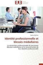 Identite Professionnelle Et Blesses Medullaires:  Quelles Ressources Pour Une Classe D'Accueil ?