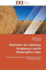 Obtention de Cellulases Fongiques a Partir D'Aspergillus Niger:  Discours Sur La Violence