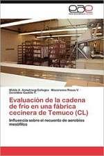 Evaluacion de La Cadena de Frio En Una Fabrica Cecinera de Temuco (CL):  Economia, Espacio y Poder