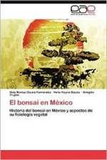 El Bonsai En Mexico:  del Objeto a la Experiencia