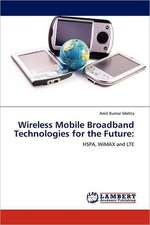 Wireless Mobile Broadband Technologies for the Future