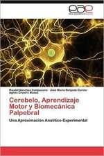 Cerebelo, Aprendizaje Motor y Biomecanica Palpebral:  Etnografia de Un Proyecto de Inclusion Digital En Brasil