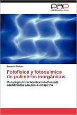 Fotofisica y Fotoquimica de Polimeros Inorganicos:  de La Forma Al Significado de Los Espacios Construidos