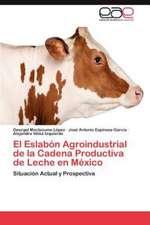 El Eslabon Agroindustrial de La Cadena Productiva de Leche En Mexico:  Fenomenologia En DOS Novelas