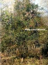 Philip-Lorca Dicorcia:  Panorama