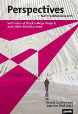 Perspectives in Metropolitan Research I:  Mega-Projects and Urban Development