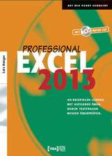 Excel 2013 Professional Buch