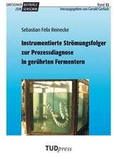 Instrumentierte Strömungsfolger zur Prozessdiagnose in gerührten Fermentern