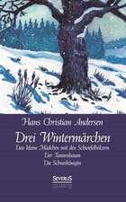 Drei Wintermarchen:  Das Kleine Madchen Mit Den Schwefelholzern, Der Tannenbaum, Die Schneekonigin