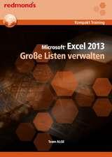 Excel 2013 Große Listen verwalten