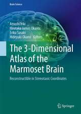 The 3-Dimensional Atlas of the Marmoset Brain: Reconstructible in Stereotaxic Coordinates