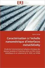 Caracterisation A L Echelle Nanometrique D Interfaces Metal/Sioxny:  Territoire, Identite Et Conflits D''Usages