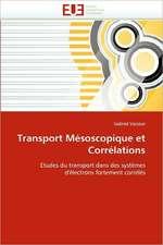 Transport Mesoscopique Et Correlations:  Etude Asymptotique Et Simulation