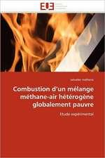 Combustion d'un mélange méthane-air hétérogène globalement pauvre