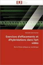 Exercices D'Effacements Et D'Hybridations Dans L'Art Video:  Quels Soins Et Quel Devenir