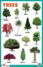 Trees Educational Chart