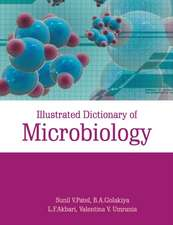 Illustrated Dictionary of Microbiology