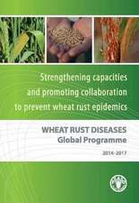 Wheat Rust Diseases Global Programme:  Strengthening Capacities and Promoting Collaboration to Prevent Wheat Rust Epidemics