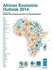 African Economic Outlook 2014:  Global Value Chains and Africa's Industrialisation