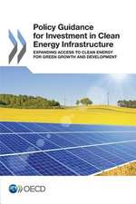 Policy Guidance for Investment in Clean Energy Infrastructure:  Expanding Access to Clean Energy for Green Growth and Development