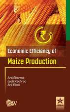 Economic Efficiency of Maize Production