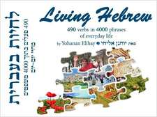 Living Hebrew (Text with Audio CD):  490 Verbs in 4000 Phrases of Everyday Life