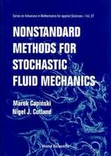 Nonstandard Methods for Stochastic Fluid