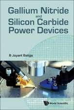 Gallium Nitride & Silicon Carbide Power Devices:  Selected Works of Ludwig Faddeev