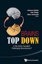 Brains Top Down